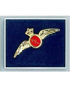 Jakkem. PPL wing